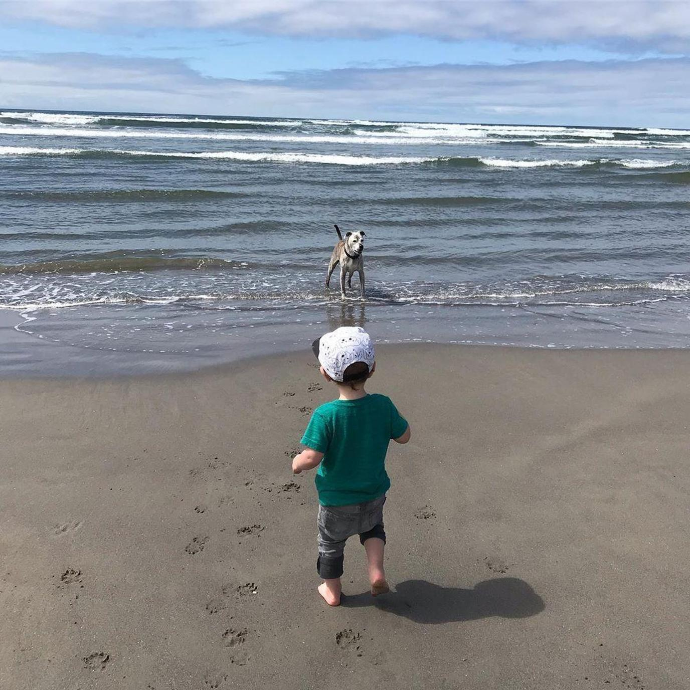 A Toddler and Dog Play on a Pet-Friendly Beach in Seaside.