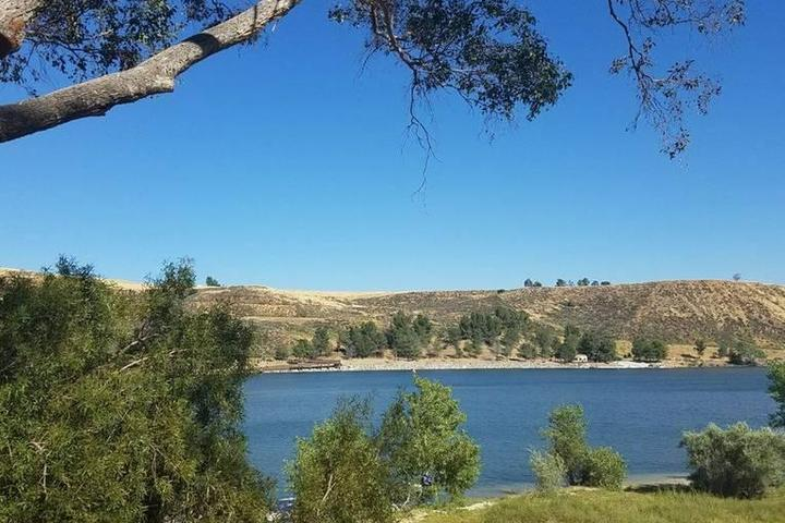 Pet Friendly Castaic Lake State Recreation Area