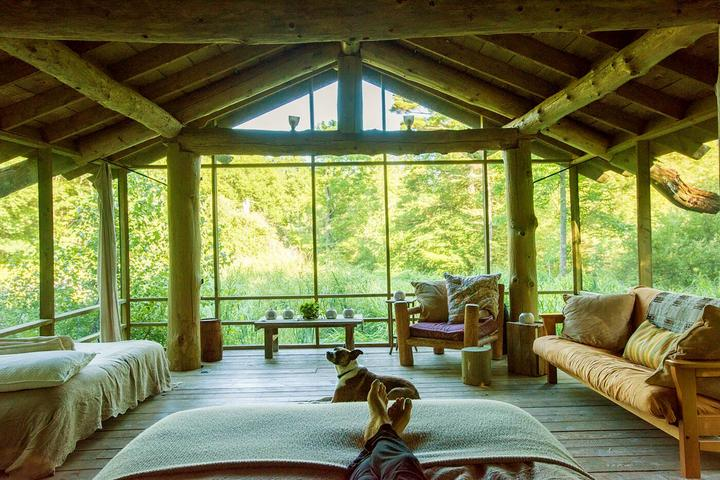 Go Off-Grid With Fido at These Pet-Friendly Airbnbs