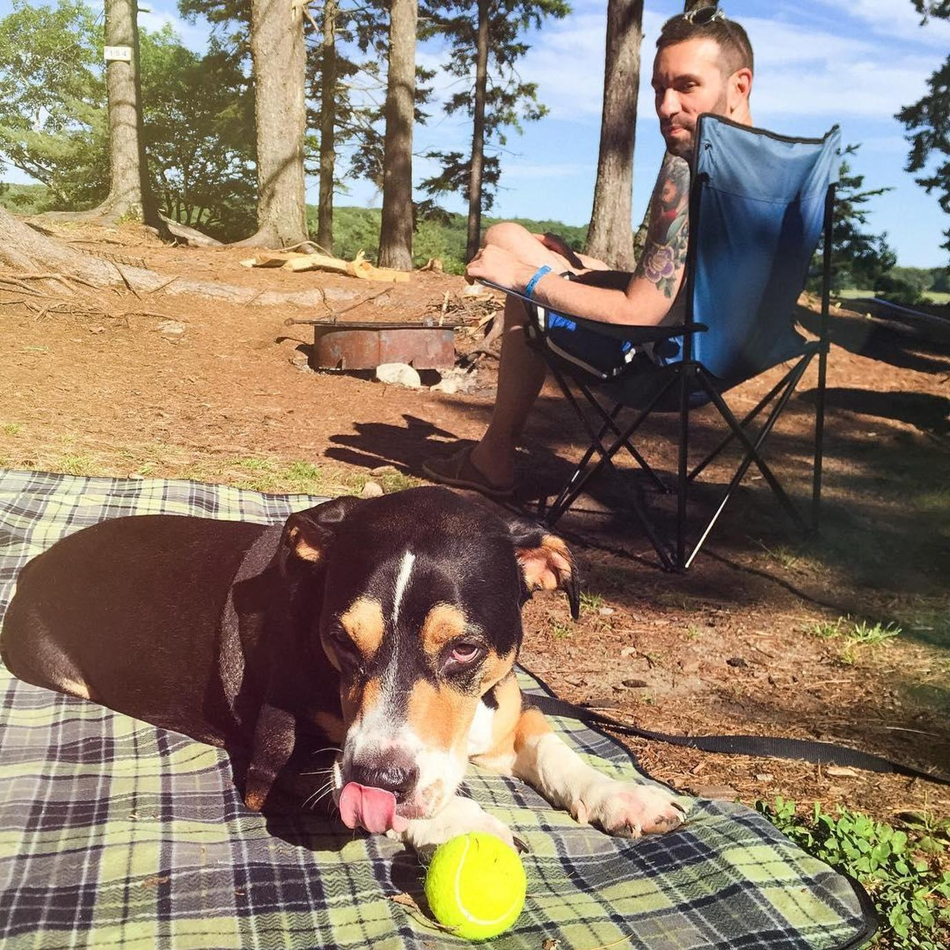 A Man and Dog Lounge on the Beach at a Pet-Friendly Oceanfront Campground in Maine.