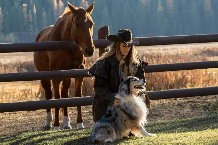 Yee-haw! Gallop With Fido at a Pet-Friendly Dude Ranch