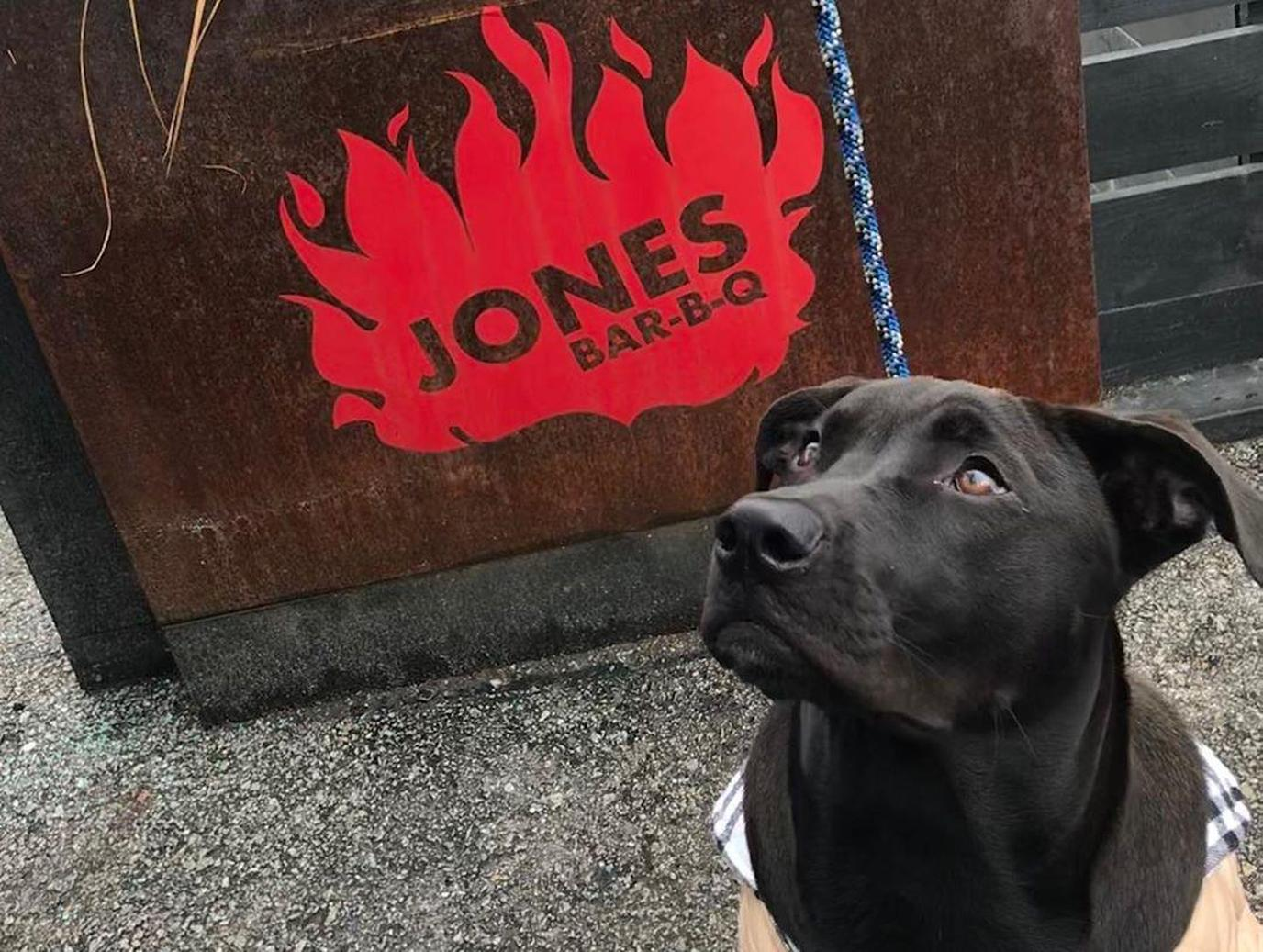 Dog Stands By the Sign for Jones Bar-B-Q, a Pet-Friendly Barbecue in Kansas City.