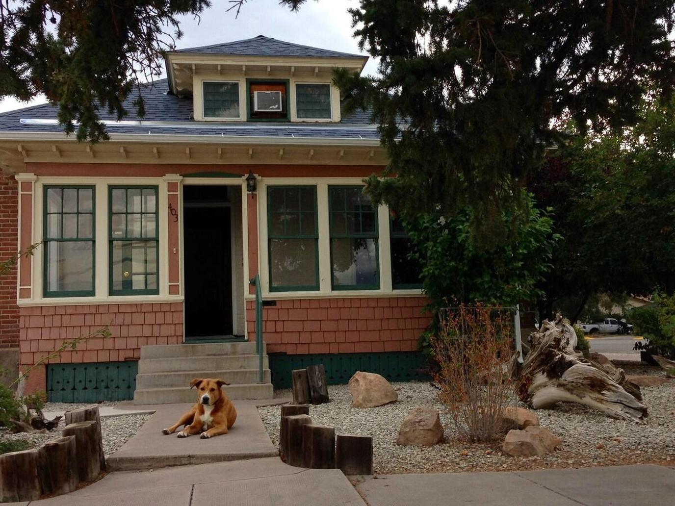 Dog Sits on the Porch of a Pet-Friendly Rental Near Great Sand Dunes National Park.