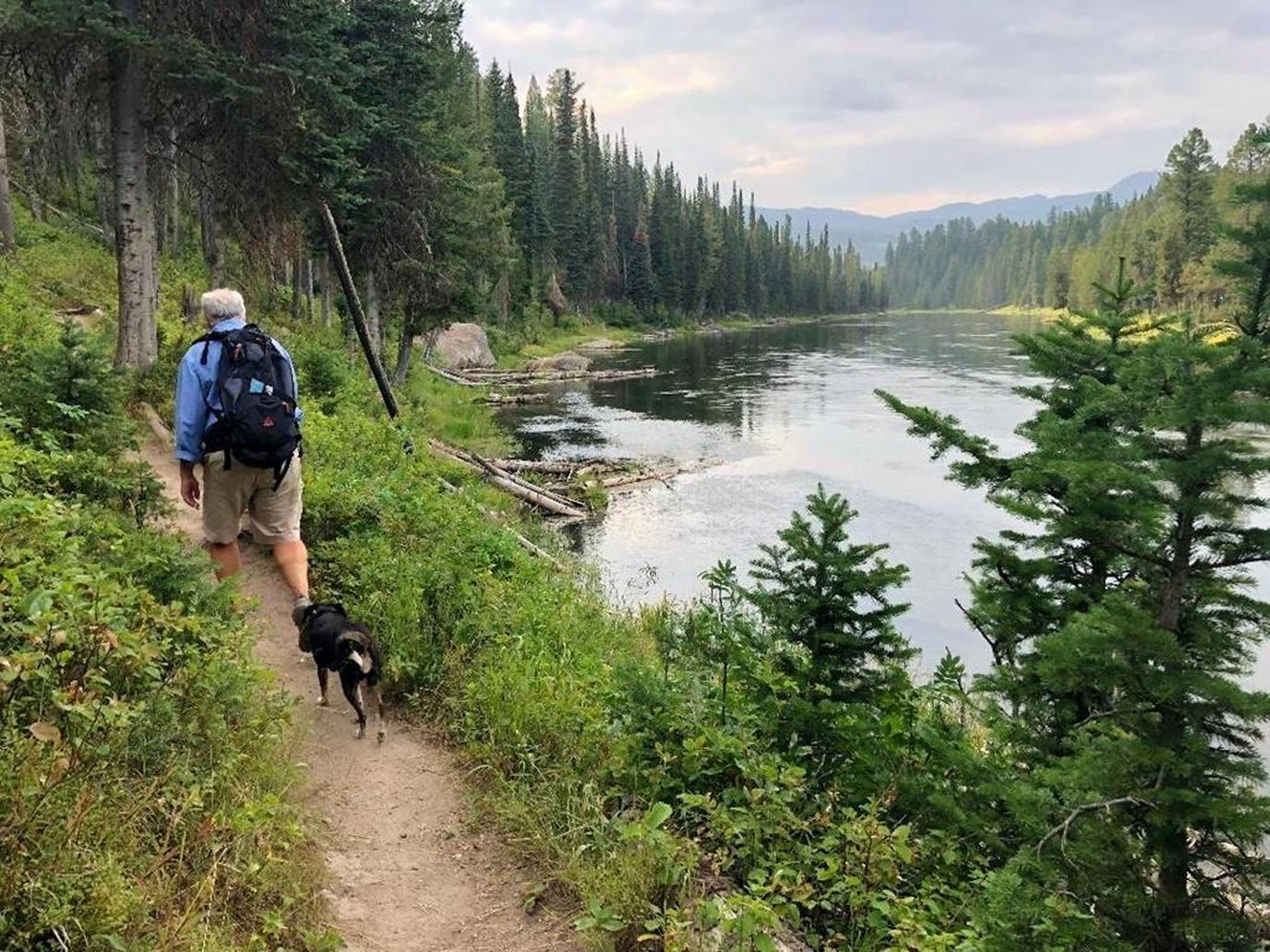 Man and Dog Walk on a Trail at the Pet-Friendly Yellowstone National Park.