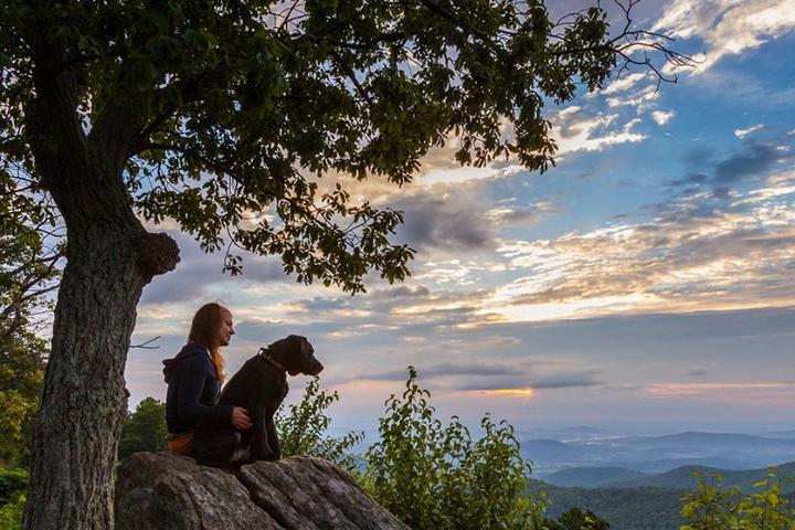 "The ""Grrreat Outdoors:"" 10 Pet-Friendly Vacation Rentals Near National Parks"