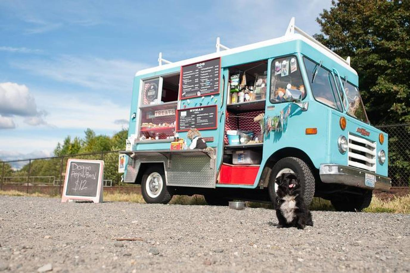 7 Dog Food Trucks Worth Chasing