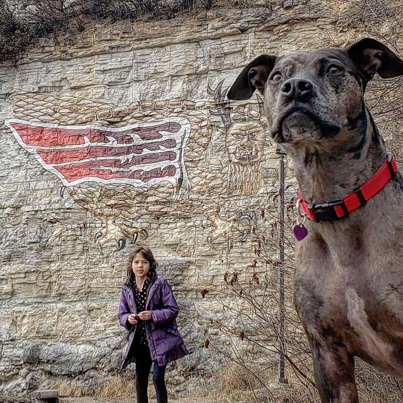 A girl and her dog on an Illinois Pet-Friendly Road Trip