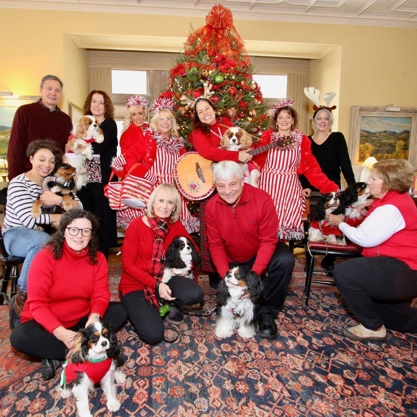 A family and their dogs having fun on Christmas