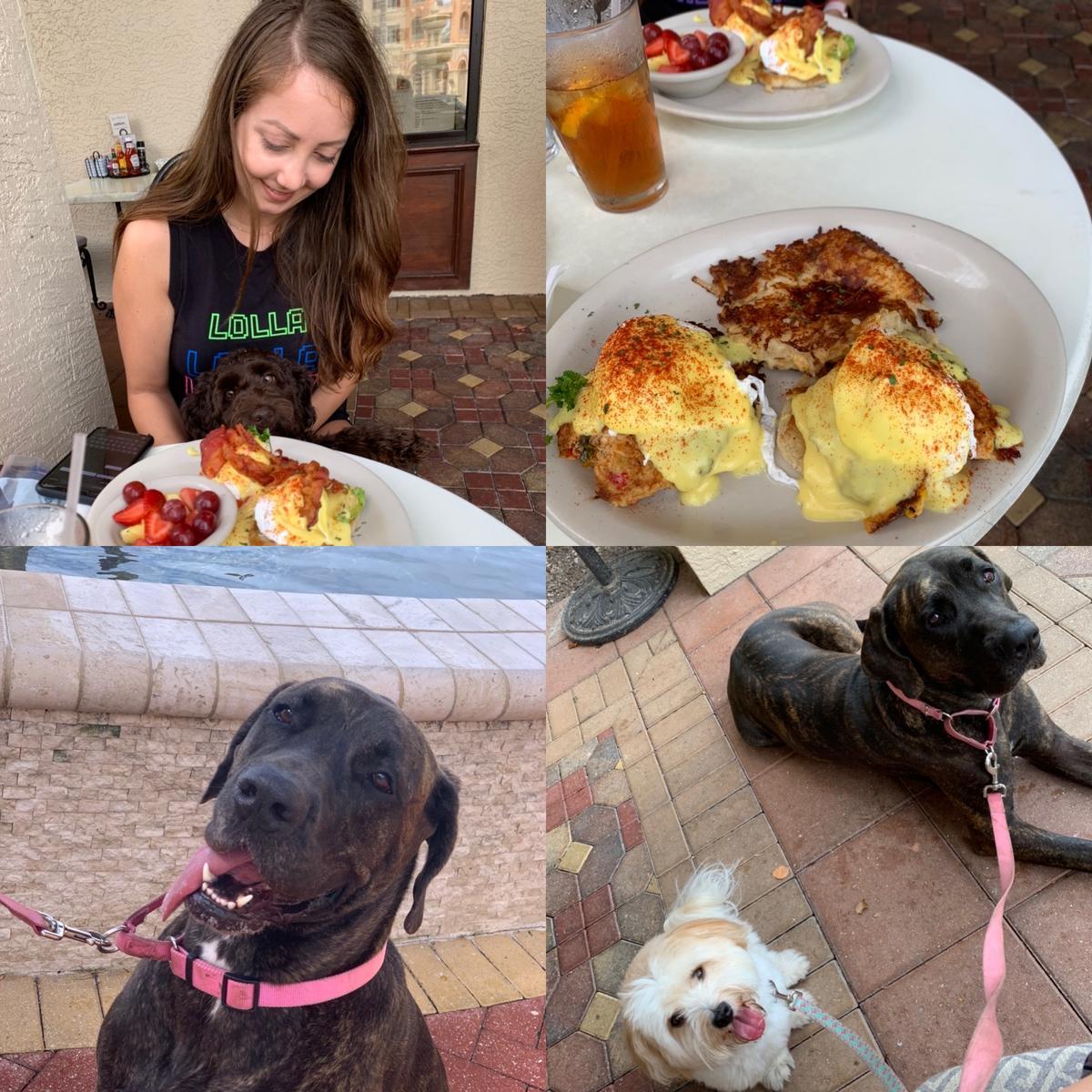 Saturday Girls puppy brunch!