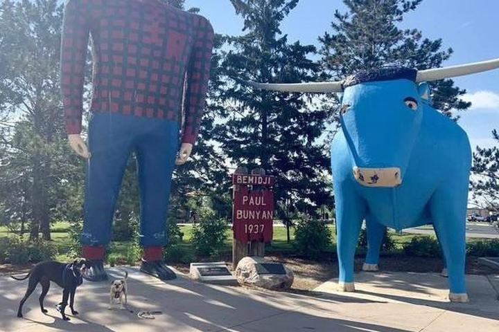 The Great River Road: A Pet-Friendly Road Trip