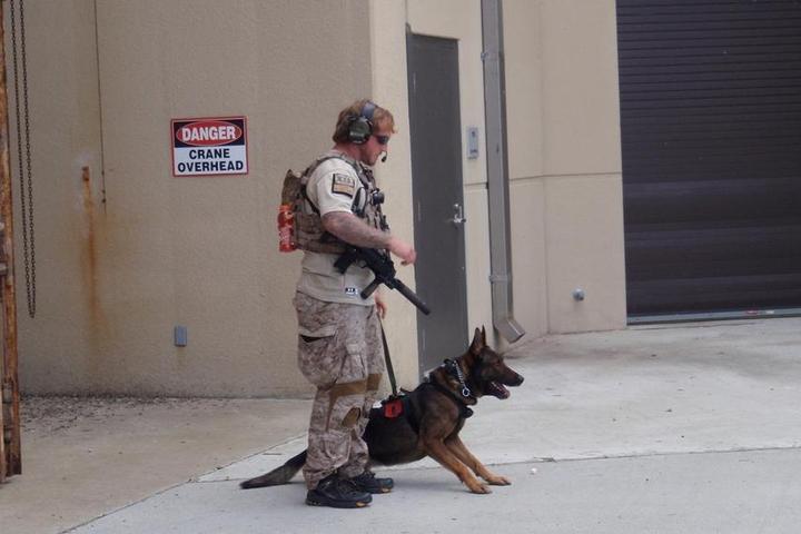 Navy SEAL Canine Handler