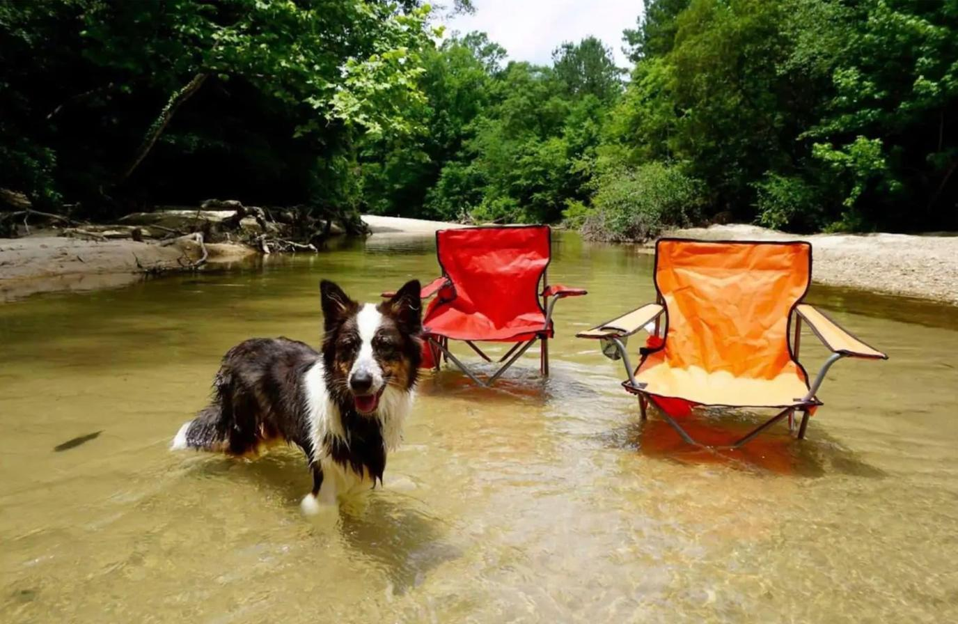 Thunder Ridge, a Pet-Friendly Themed Vacation Rentals