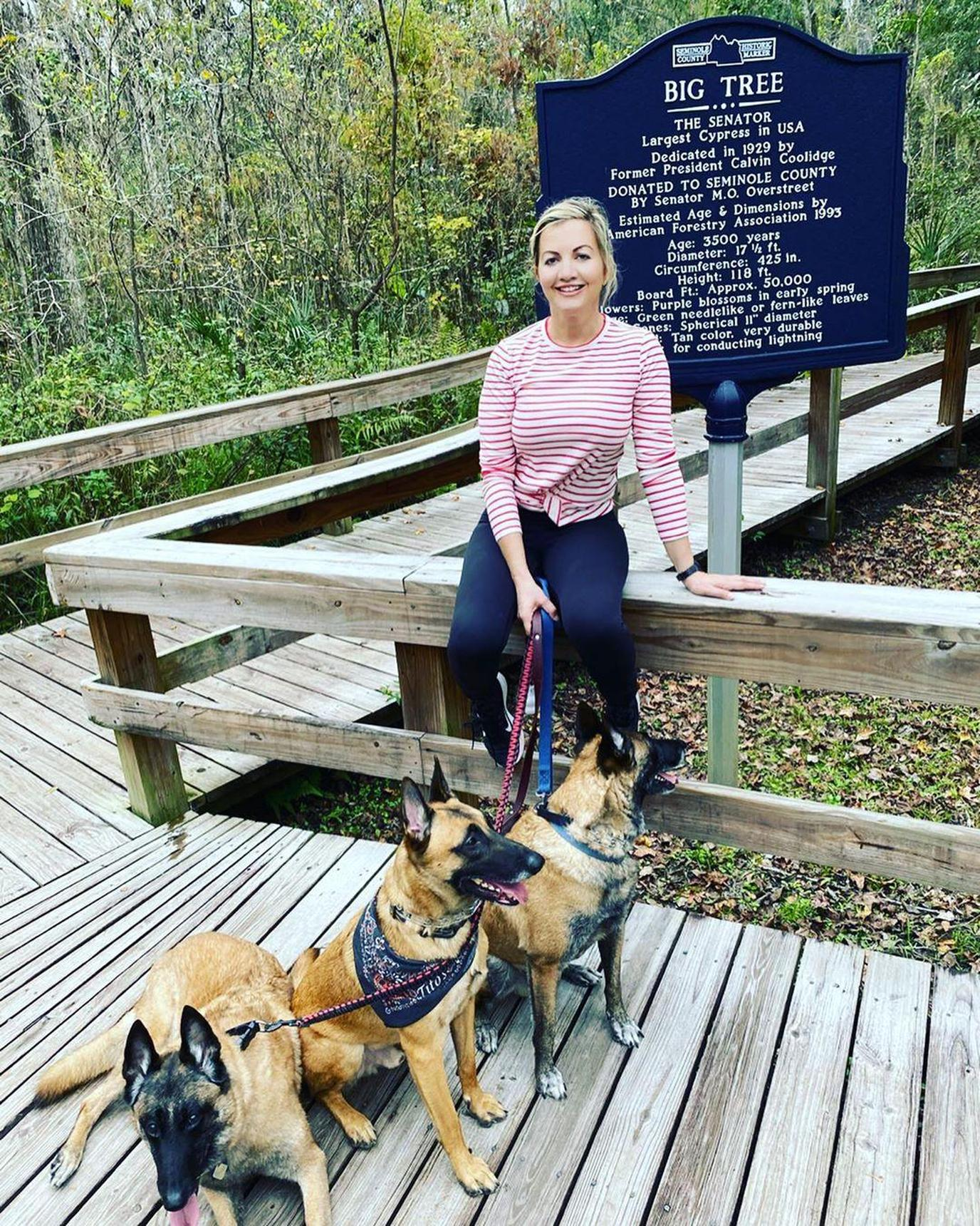 three German shepherds having fun at Cross Seminole Trail