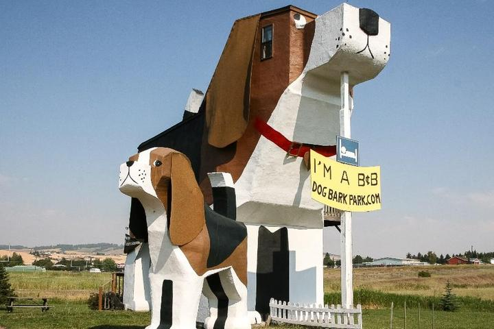 """Why We're """"Mutts"""" About Dog Bark Park Inn"""
