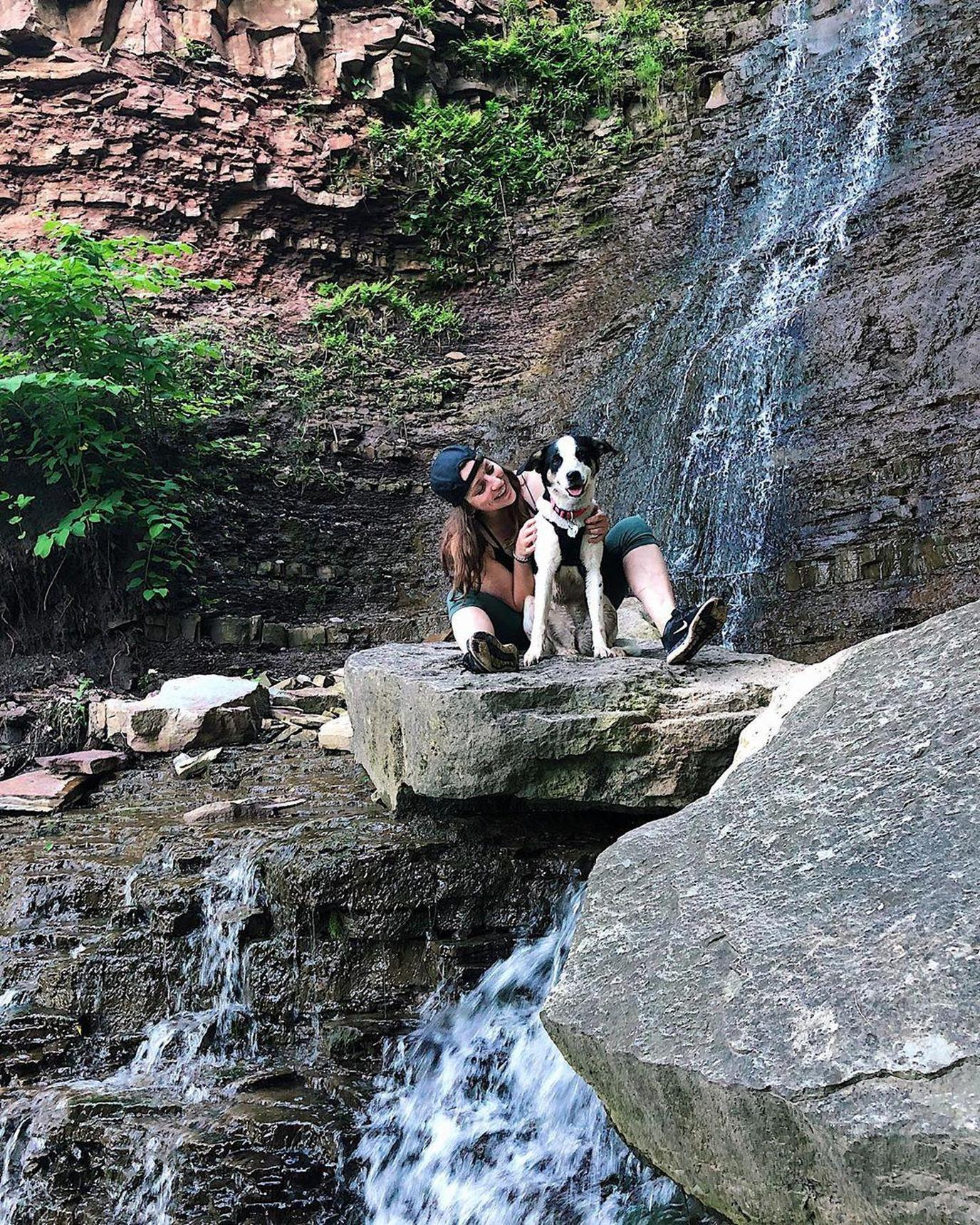How to Plan a Pet-Friendly Staycation in Your Neck of the Woods