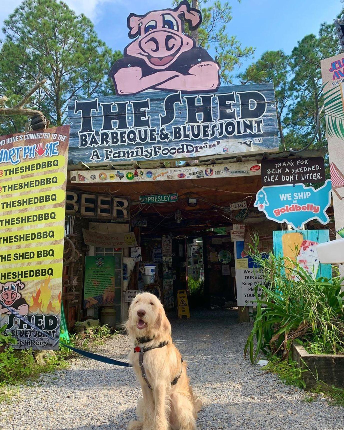 The Shed BBQ & Blues Joint in Ocean Springs, MS is pet-friendly
