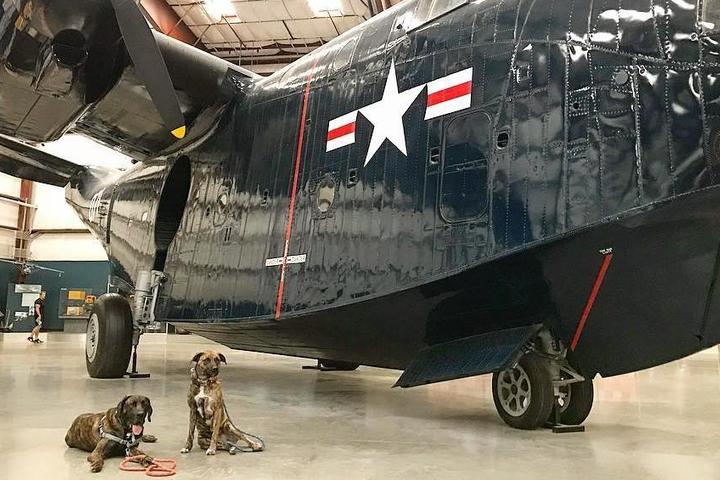 Take Flight With Fido at These Air & Space Museums