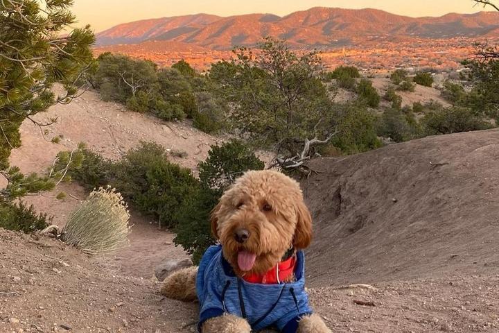 BringFido's Guide to North Central New Mexico