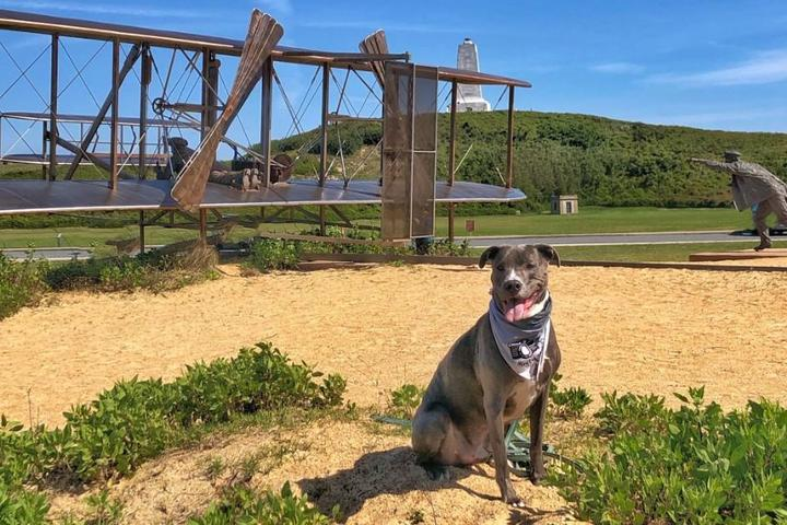 BringFido's Guide to The Outer Banks