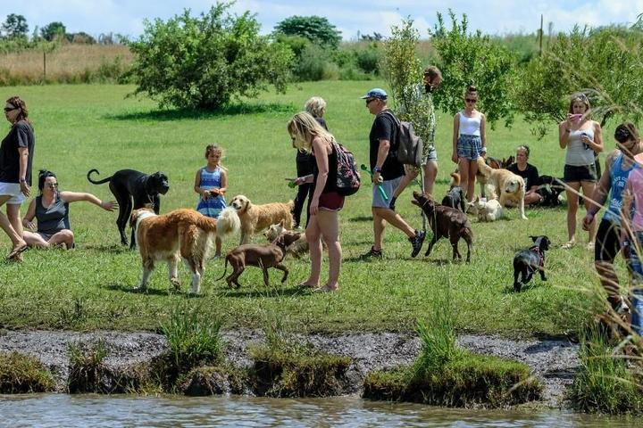 The World's Largest Dog Parks