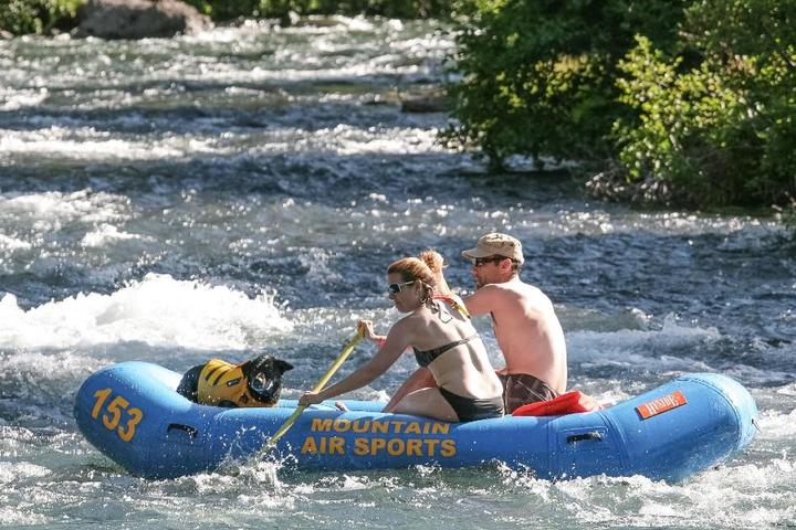 Where to Go Whitewater Rafting With Your Dog