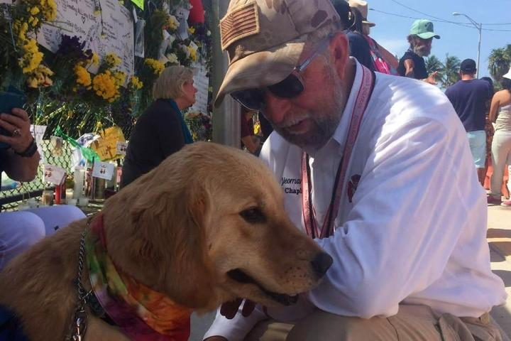 Dogs in the News: July 2021