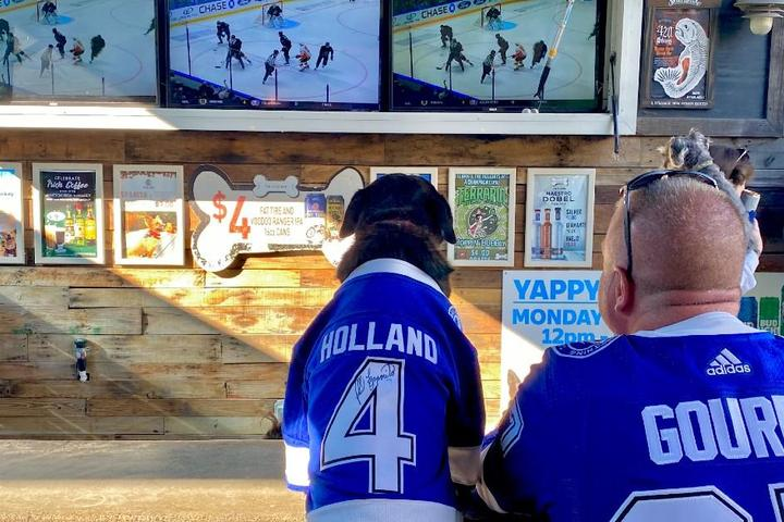 10 Pet-Friendly Sports Bars That Welcome Furry Fans