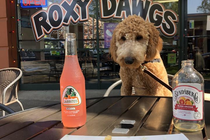 Pet Friendly Roxy Dawgs