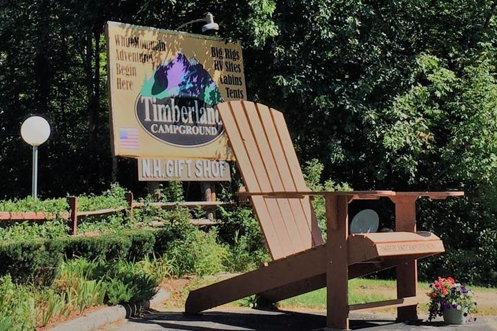 Pet Friendly Timberland Campground