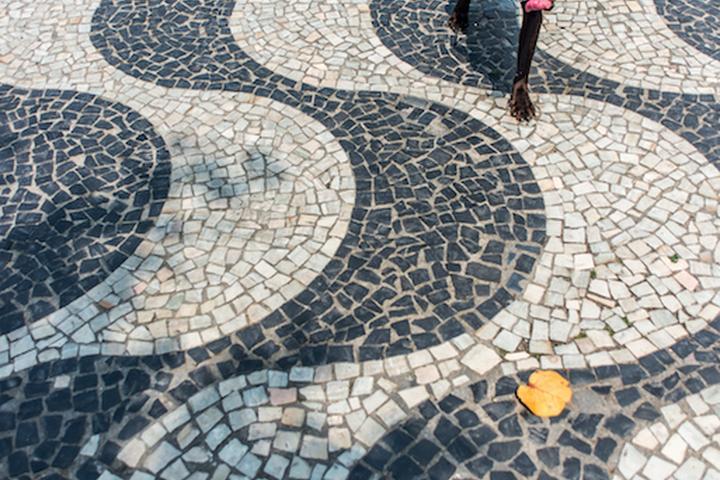Pet Friendly Boardwalk of Copacabana