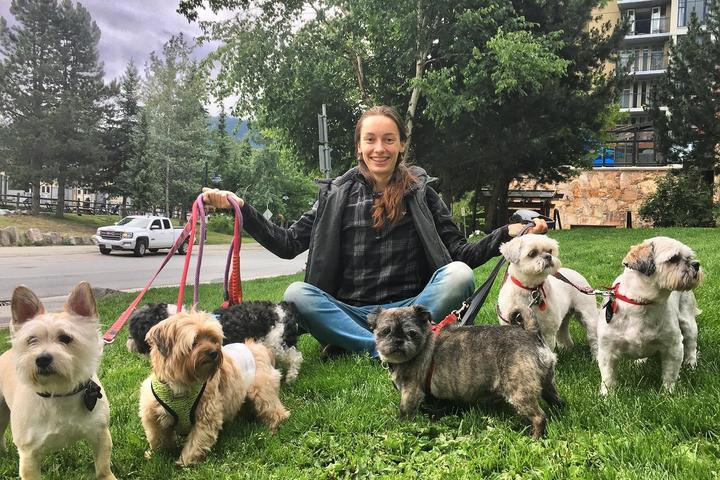 Pet Friendly Whistler Dog Sitting and Dog Walkers