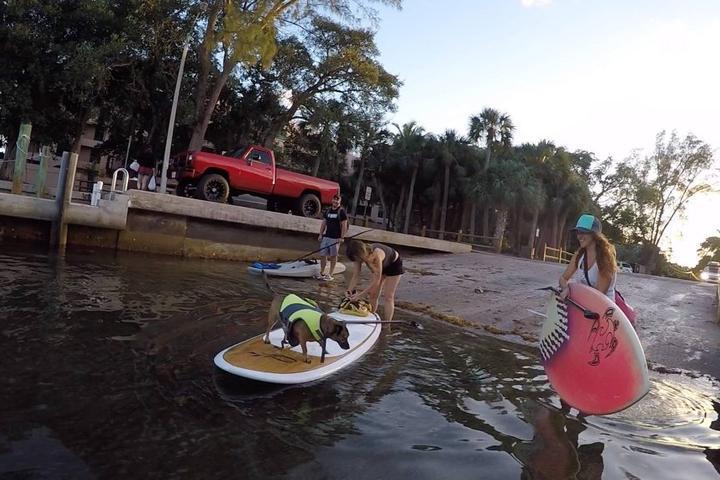 Pet Friendly Salty Dog Paddle