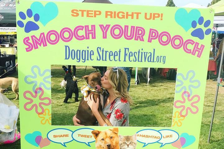 Pet Friendly Annual Doggie Street Festival