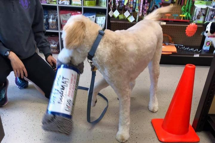 Pet Friendly Wholesome Pet Essentials