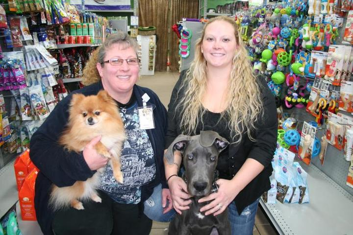 Pet Friendly The Wild Indoors Pet Supplies and More