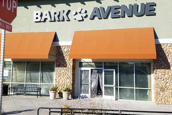 Pet Friendly Bark Avenue