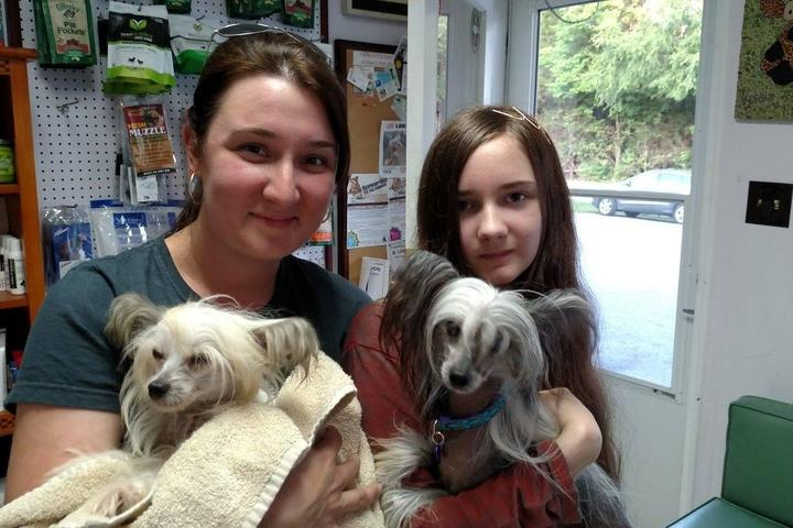 Pet Friendly Tysor Veterinary Clinic