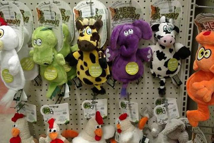 Pet Friendly Jurassic Pets