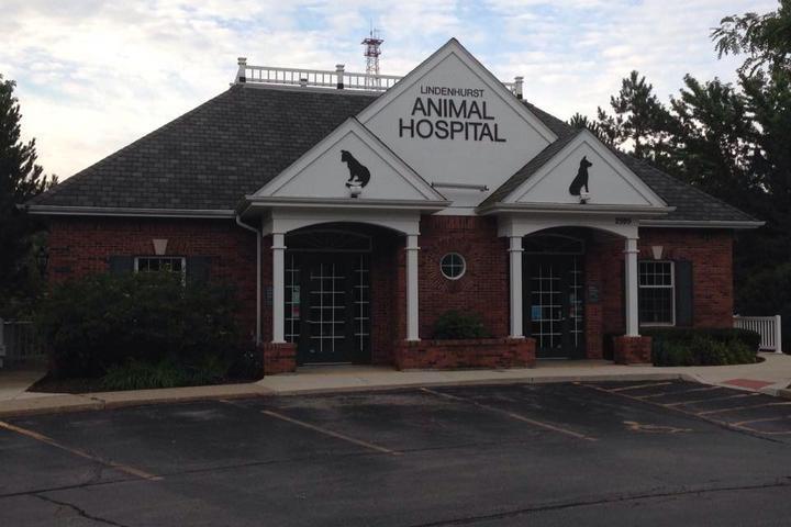 Pet Friendly Lindenhurst Animal Hospital