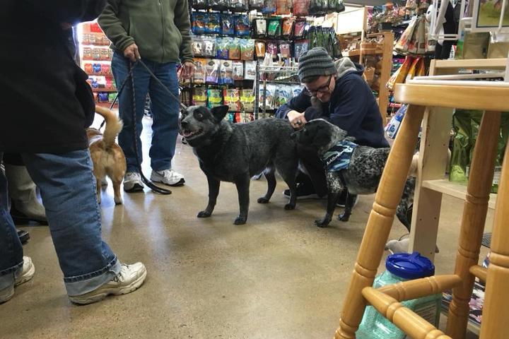 Pet Friendly Hank's Pet Food Market