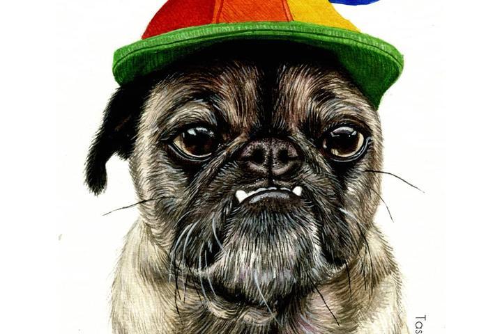 Pet Friendly Tasmin Bassett Art
