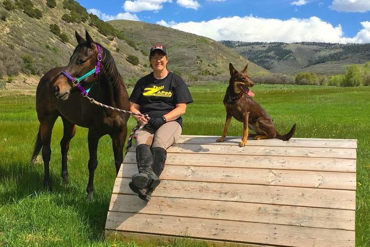 Pet Friendly Animal Health VIPS