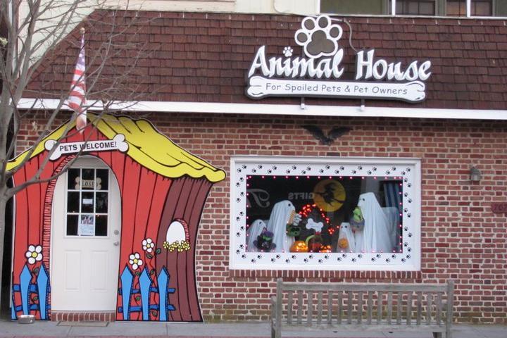 Pet Friendly Animal House
