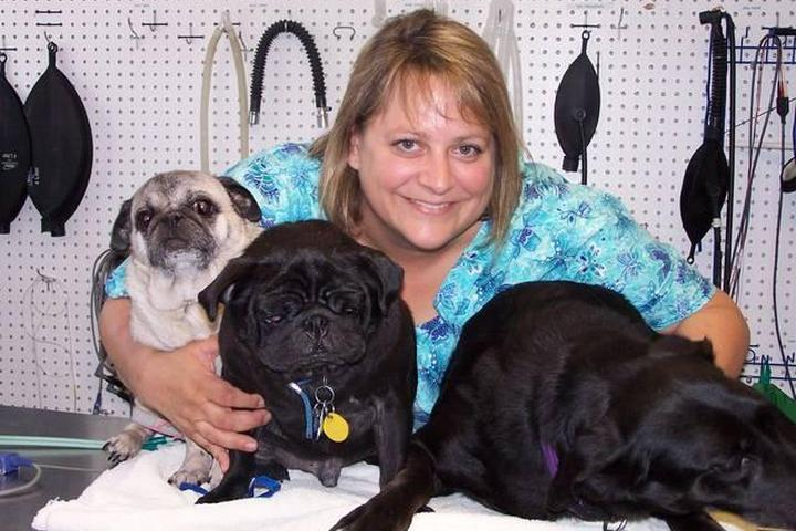 Pet Friendly Blue Cross Pet Hospital