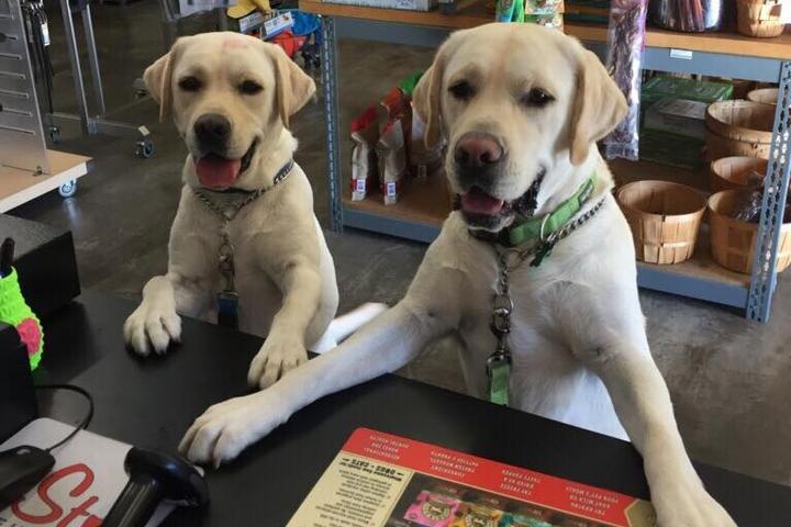 Pet Friendly PetStop Warehouse