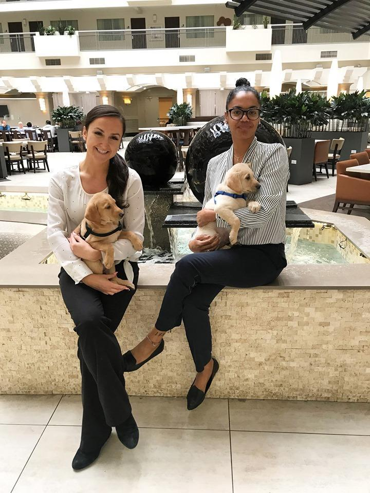 Two women sit with puppies in the lobby of the Embassy Suites Seattle Tacoma Airport