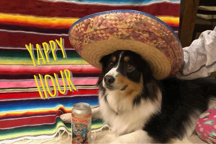 Pet Friendly Dog Friendly Happy Hour Jupiter