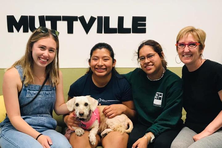 Pet Friendly Muttville Senior Dog Rescue