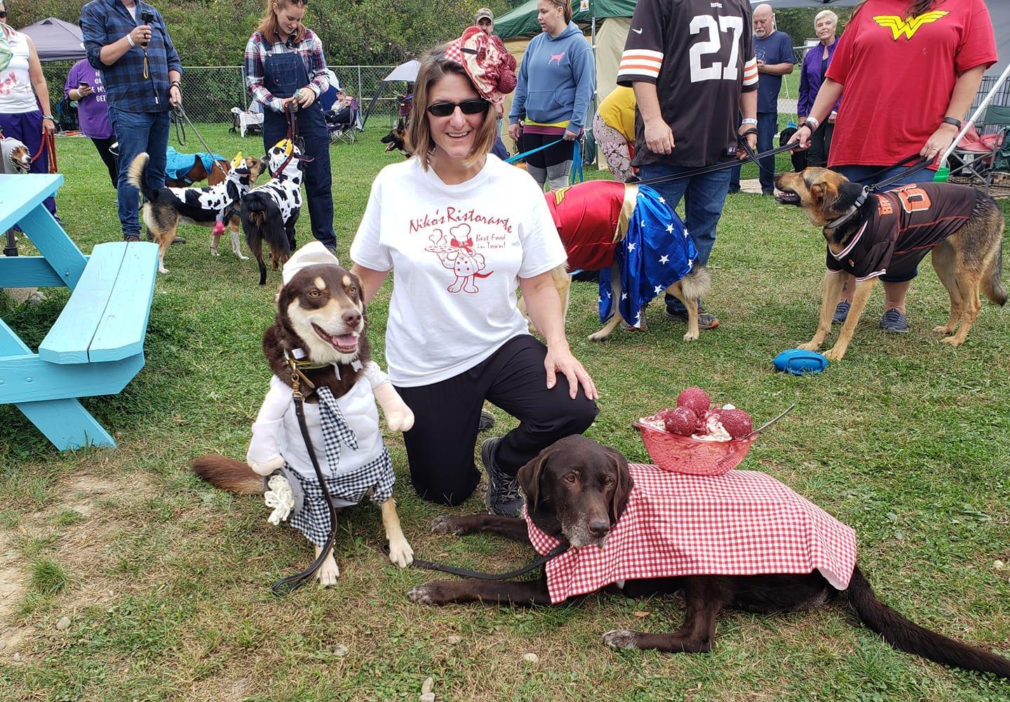 Dogs in Halloween Costumes as a Chef and a Table With Spaghetti and Meatballs.