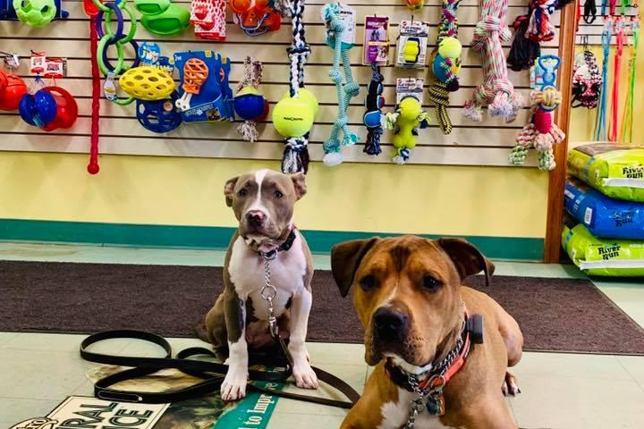 Pet Friendly P & D Pet Supply